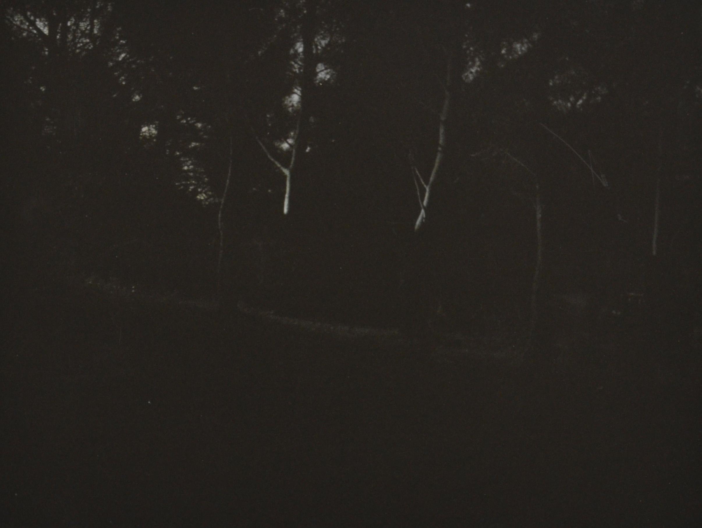 untitled, b/w print, 30 x 40 cm, 2011